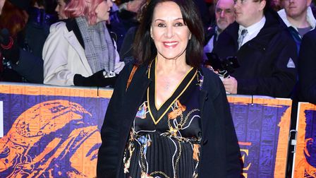 Arlene Phillips is the director of Hair the Musical: An Outdoor Concert heading to Norwich this week