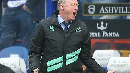 Steve McClaren has reportedly been sacked ahead of QPR's game against Norwich City Picture: Paul Che