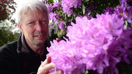 Rhododendrons and azaleas are once again in bloom at the National Trust's Sheringham Park. The park'