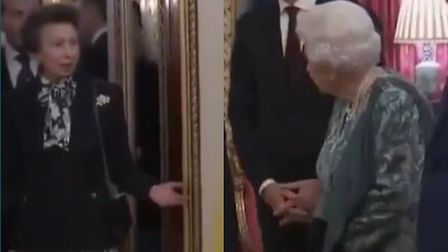 Princess Anne was chastised by the Queen after she snubbed president Donald Trump by refusing to gre
