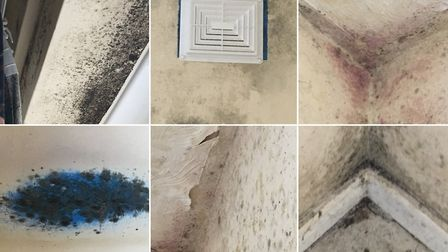 The situation in Mick Riley's flat in April, before a mould wash was carried out by the council's co