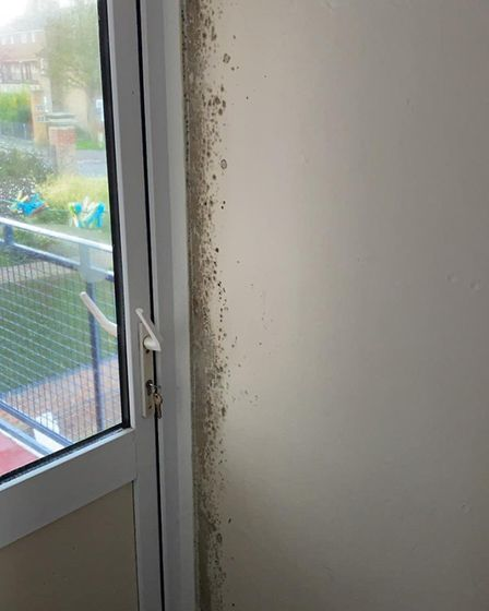 Mould has reappeared all over Mick Riley's council flat as he claims a council-organised mould wash