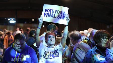 EU supporters during the Final Say rally at the Mermaid Theatre, London. Photo: PA