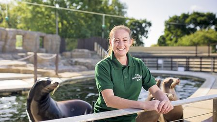 Zookeeper Alex Pinnell with sea lions at Whipsnade Zoo. Picture: Will Amlot