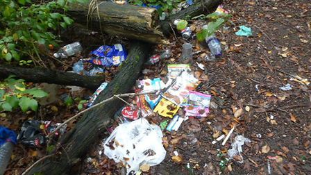 Litter in Audley Park. Photo: Supplied by Martyn Everett.