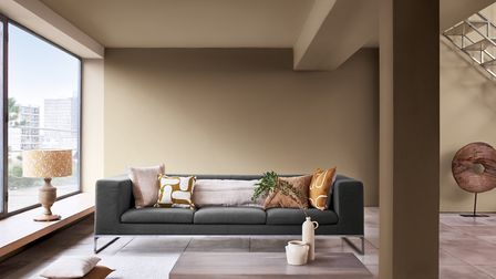Dulux have named Brave Ground their colour of the year for 2021. Picture: Dulux