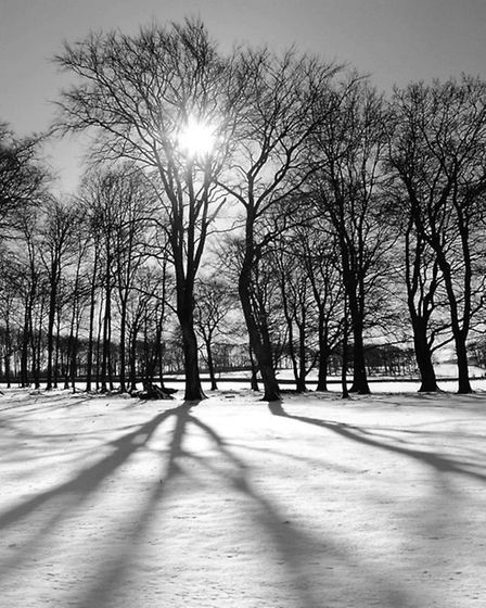 A winter image from Dave Butcher