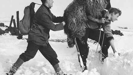 Ken (right) rescuing sheep from the snow in the bitter winter of 1962