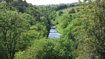 A view of Lathkill Dale from above