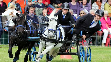 British Scurry and Trials Driving competitors participate in the 'Arena Challenge' demonstrating their skills against both...