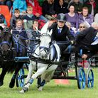 British Scurry and Trials Driving competitors participate in the 'Arena Challenge' demonstrating their skills against both ob...
