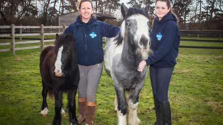 Catherine Read, Head Groom at the Rolleston Blue Cross Centre with Charlotte Ward, Horse Care and Riding Groom, and horses Ma...