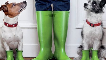 Woofs and Wellies