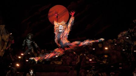 Javier Cid (Macavity) in Cats, on stage in Nottingham Photo: Alessandro Pinna