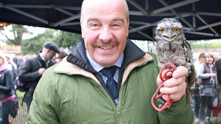 James with the Frogmouth Owl at Chatsworth Country Fair