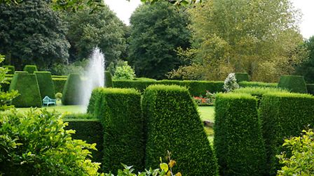 Across the garden - let hedge-cutting commence!