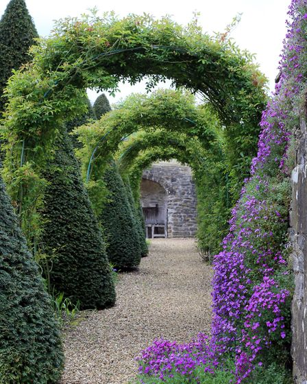 Part of the beautifully crafted flower tunnel which runs along the lower terrace