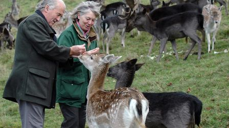 Carol and Roger Heap with some of the Chestnut Centre's deer herd