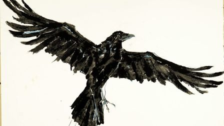 Sally's drawing of a raven