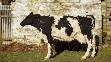Sally's life-size sculpture of a cow, using limestone, coal dust, glue, hay, horsehair, wood and feathers