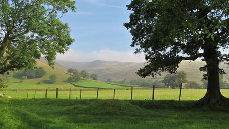 A glorious view of the gently sweeping hills