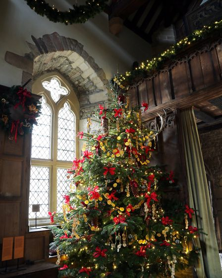 Dried fruit and ribbons on the branches of the hall's largest tree Photo: Andrew Eyley