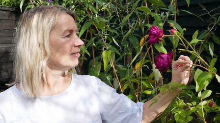 Katharine admiring a rose in the garden of her house in Hathersage