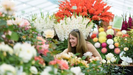 A visitor inside the Floral Marquee at RHS Chatsworth Flower Show