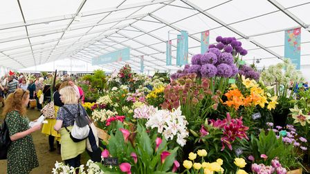 The Floral Marquee filling up with visitors at RHS Chatsworth Flower Show