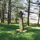 Medieval cross in Shillito Wood