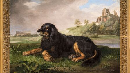 Portrait of 'Tawney', the 6th Duke's spaniel, with the Palatine beyond, 1819 Peter Wenceslaus ? Glen Segal