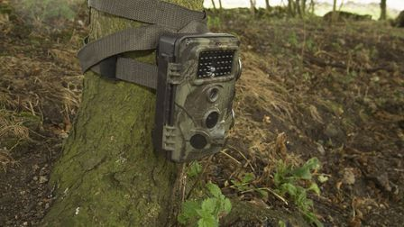 A camera trap we used to see if there was any badger activity