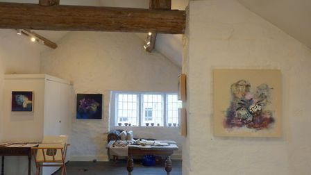 The gallery with paintings by Louise McClary on show