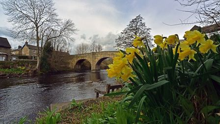 Spring at Baslow by Martyn Wright