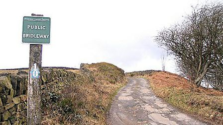 The lane to Wigtwizzle