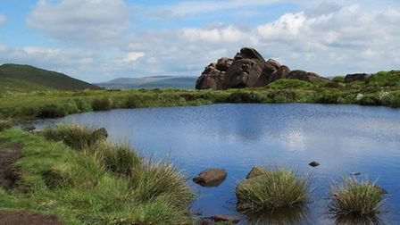 Doxey Pool by Sally Mosley
