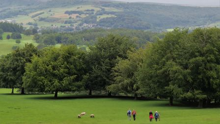 Walking across the deer park at Chatsworth