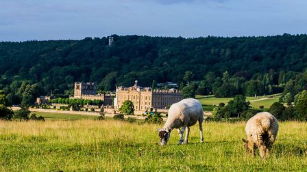 Chatsworth, which was used for Pride and Prejudice amongst other feature films. Image: Latsalomao