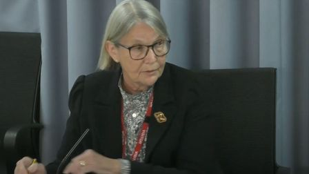Professor Christine Lee gives evidence to the Infected Blood Inquiry. Picture: Infected Blood Inquir
