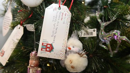Donations can be placed under the tree at their store in Anglia Retail Park Picture: CHARLOTTE BOND