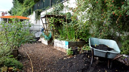 The Energy Garden, which is behind the eastbound platform of Hampstead Heath Overground Station. Pic