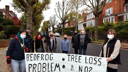 Ferncroft Avenue residents said trees pollarded as recently as 10 months ago should not be treated a