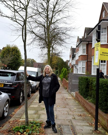 Marcelle Shulman who has criticised work on very small trees in Kiddapore Gardens. Picture: Polly Ha