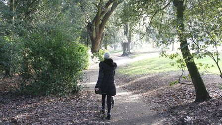 Christchurch Park in Ipswich on the first weekend of the second coronavirus lockdown. Picture: PAUL NIXON/PAUL NIXON...