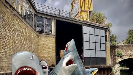 The shiver of sharks at Hoxton Docks were planned to sing, blow bubbles and smoke before Hackney cou