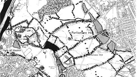 A map showing the ancient oaks on the Heath. Picture: courtesy of Michael Hammerson