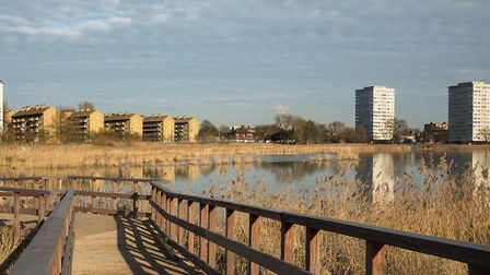 Woodberry Wetlands in Stoke Newington. Picture: Penny Dixie