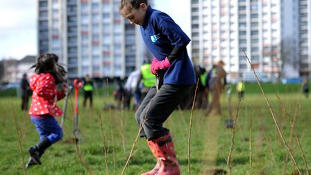 Deniz Soyer, 11 from the Junior Police Cadets takes part in a tree planting day on Broadmead Playing Fields.