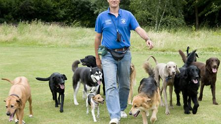 More dogs than ever before are being professionally walked on Hampstead Heath according to the Heath constabulary.
