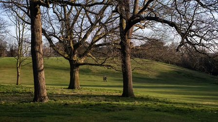 Christchurch Park in Ipswich. Unison have warned it could end up looking scruffy after spending cuts. Picture: SARAH LUCY...
